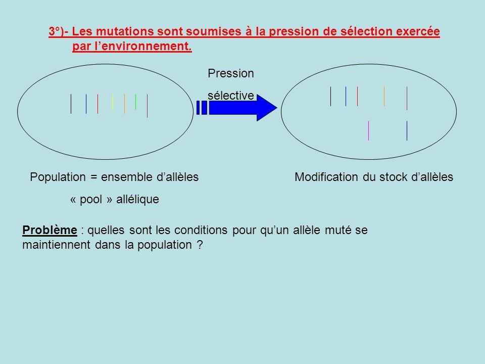 3°)- Les mutations sont soumises à la pression de sélection exercée