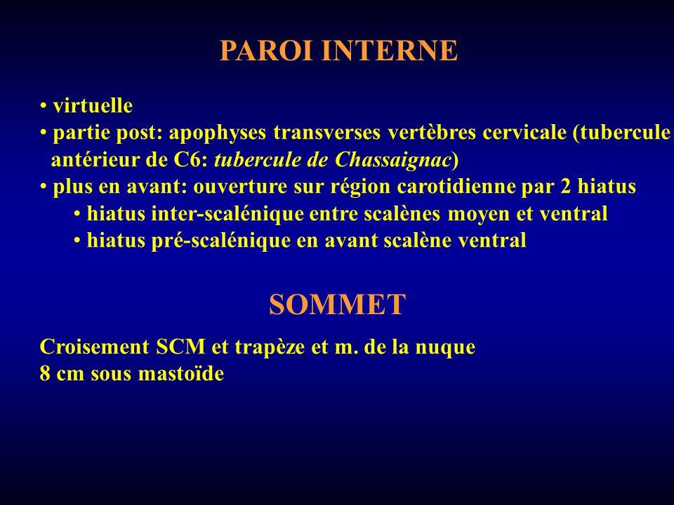 PAROI INTERNE SOMMET virtuelle