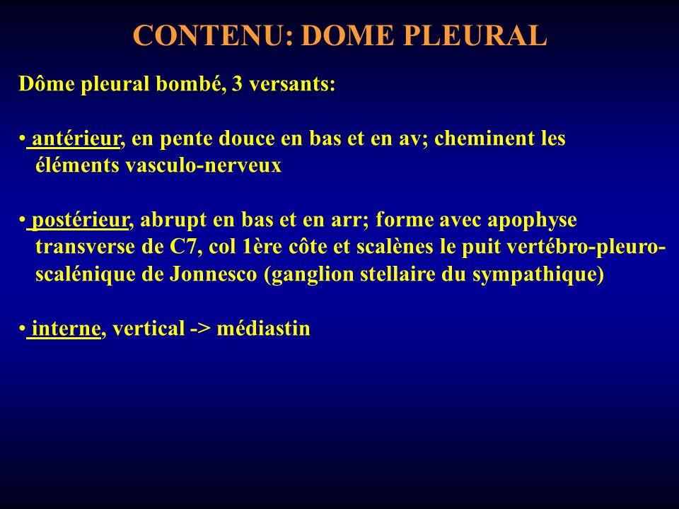 CONTENU: DOME PLEURAL Dôme pleural bombé, 3 versants: