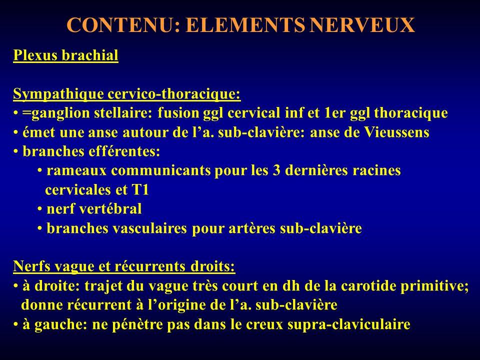 CONTENU: ELEMENTS NERVEUX
