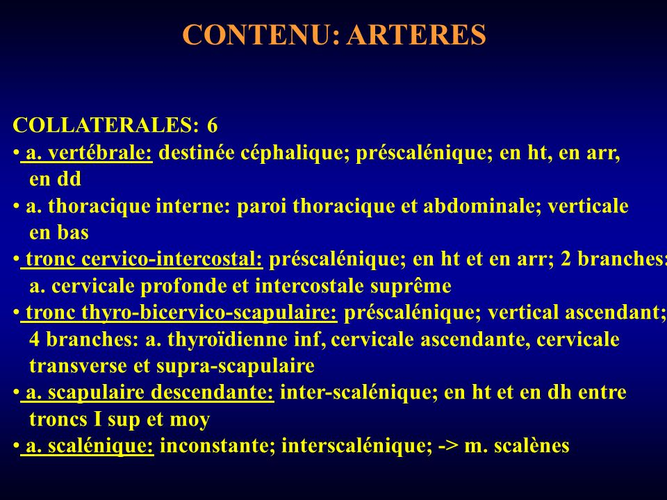 CONTENU: ARTERES COLLATERALES: 6