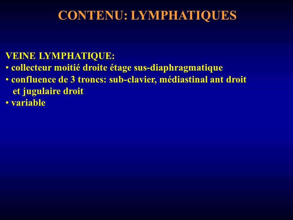 CONTENU: LYMPHATIQUES