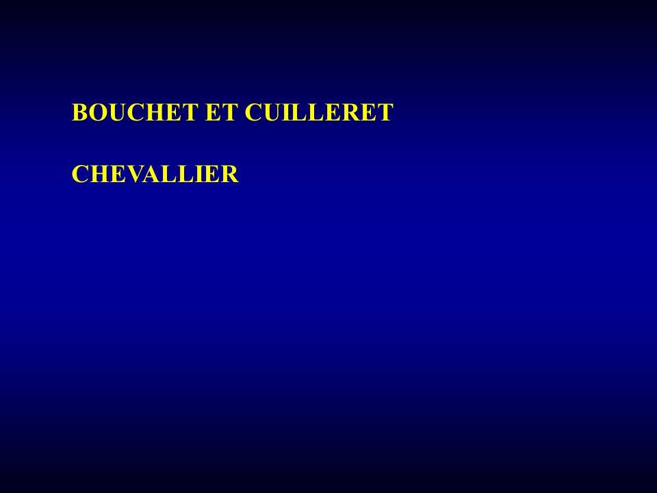 BOUCHET ET CUILLERET CHEVALLIER