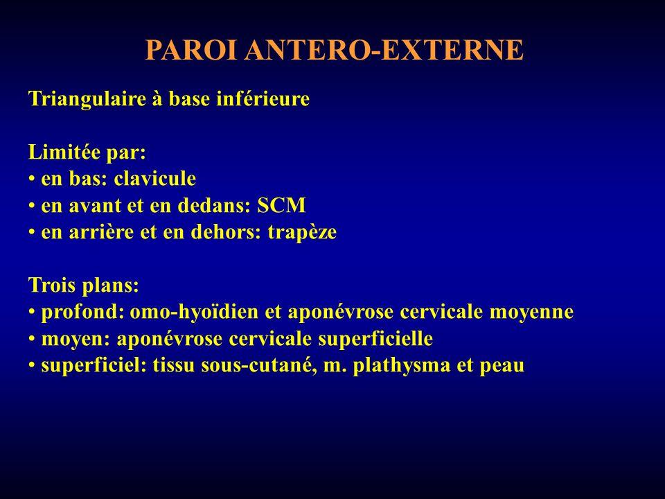 PAROI ANTERO-EXTERNE Triangulaire à base inférieure Limitée par: