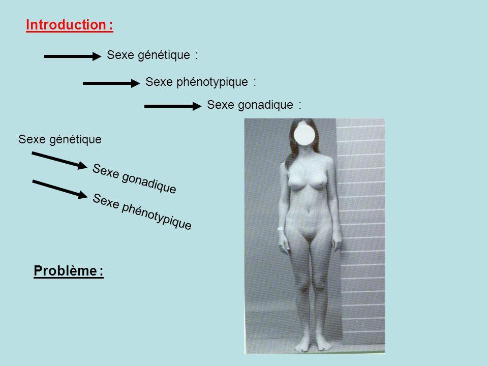 Introduction : Problème : Sexe génétique : Sexe phénotypique :