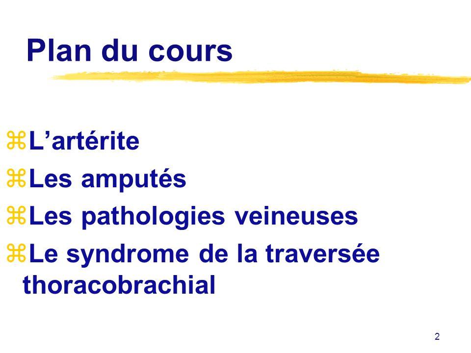 Plan du cours L'artérite Les amputés Les pathologies veineuses