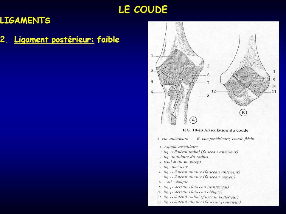LE COUDE LIGAMENTS Ligament postérieur: faible