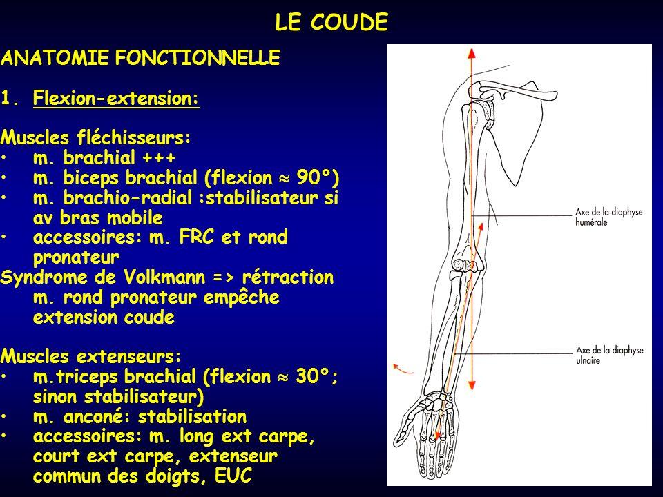 LE COUDE ANATOMIE FONCTIONNELLE Flexion-extension:
