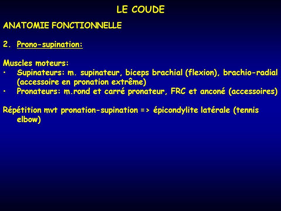 LE COUDE ANATOMIE FONCTIONNELLE Prono-supination: Muscles moteurs: