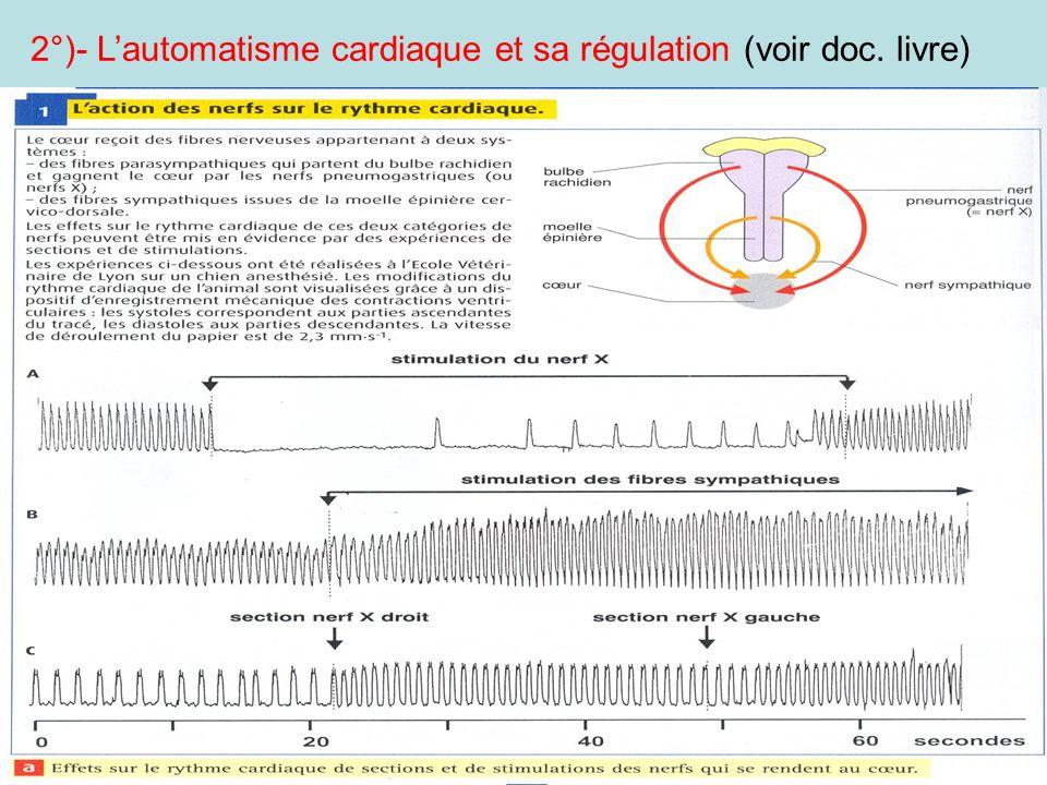 2°)- L'automatisme cardiaque et sa régulation (voir doc. livre)