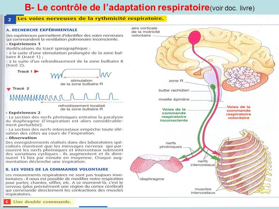B- Le contrôle de l'adaptation respiratoire(voir doc. livre)