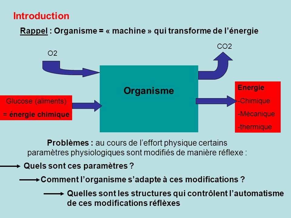 Introduction Organisme