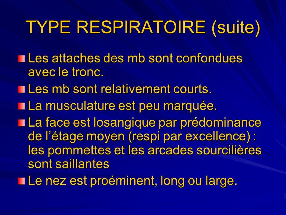 TYPE RESPIRATOIRE (suite)