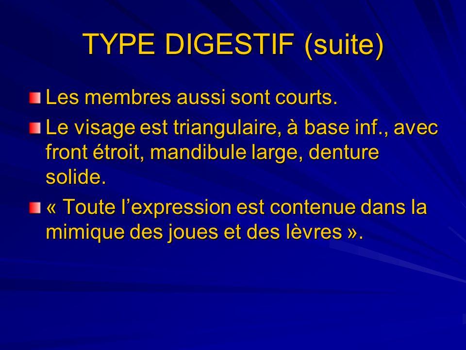 TYPE DIGESTIF (suite) Les membres aussi sont courts.