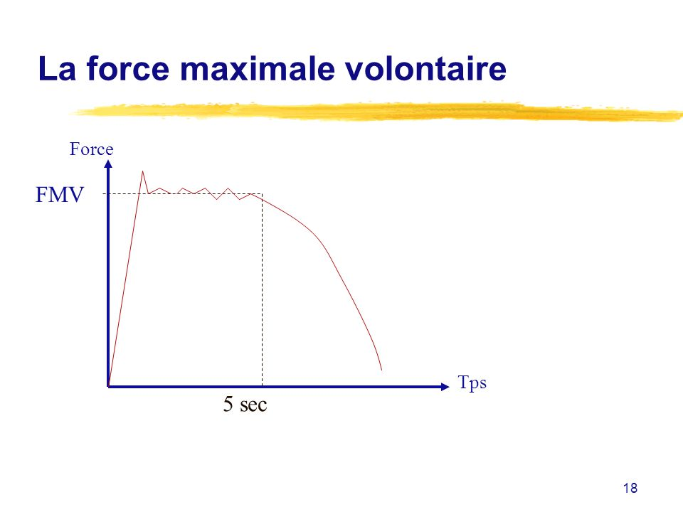La force maximale volontaire
