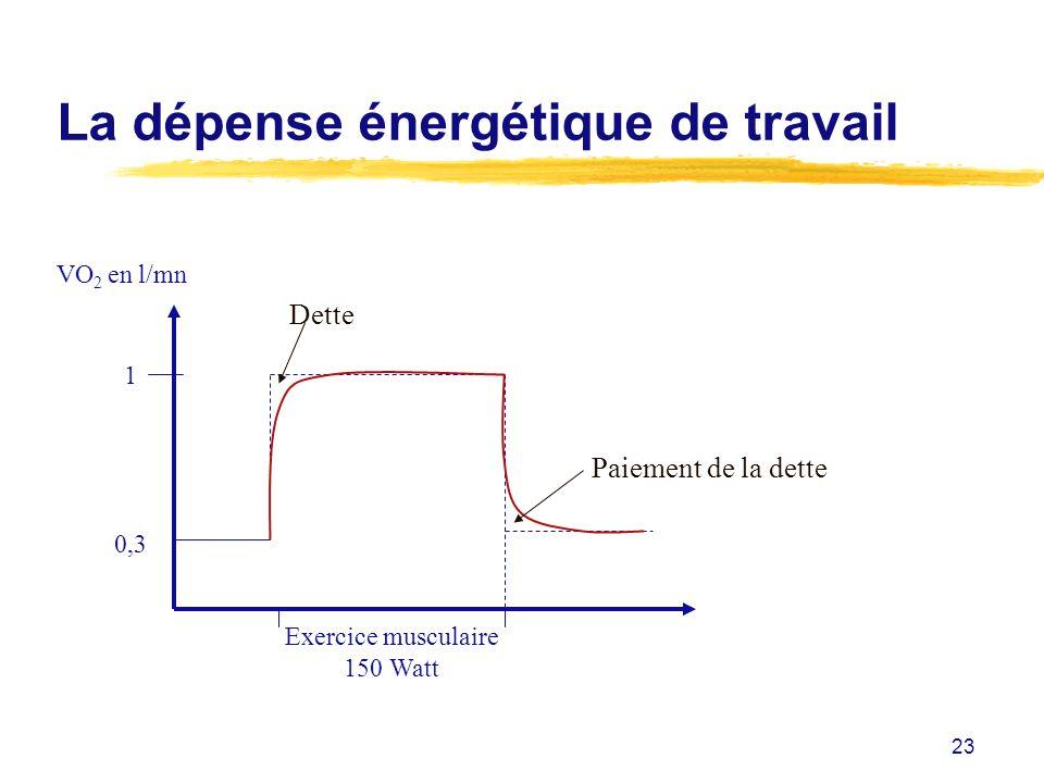 La dépense énergétique de travail