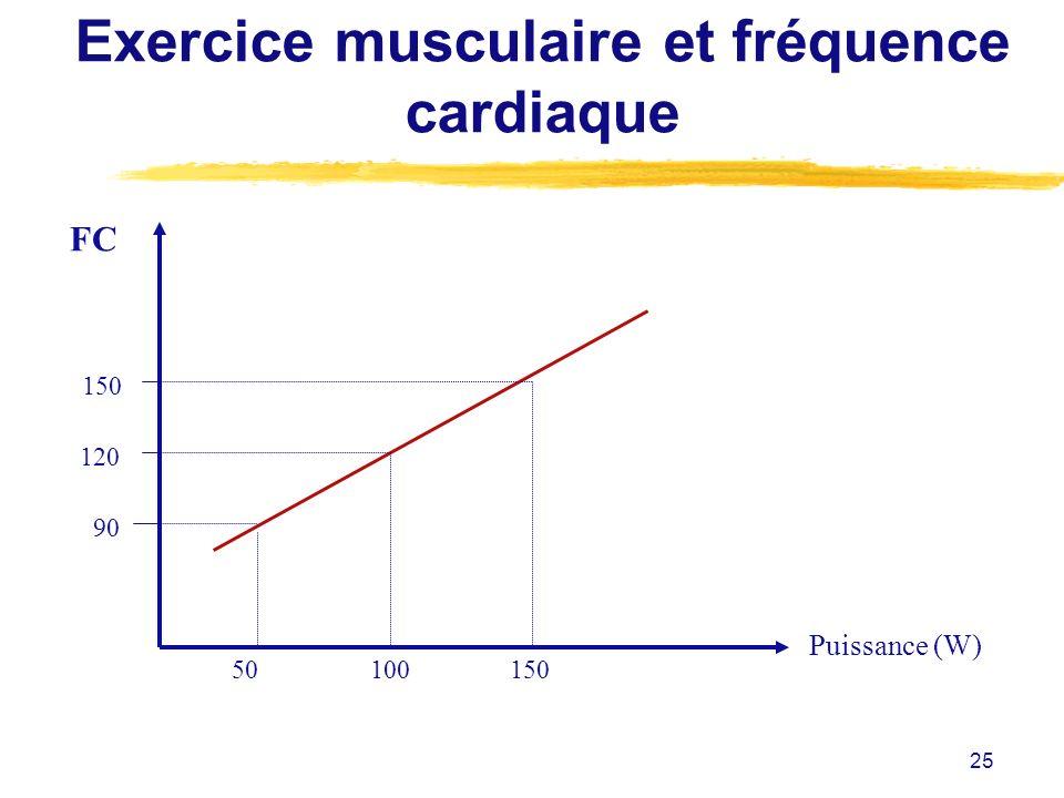 Exercice musculaire et fréquence cardiaque