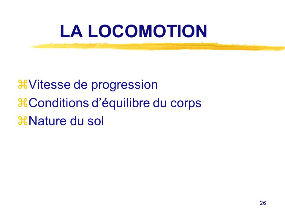 LA LOCOMOTION Vitesse de progression Conditions d'équilibre du corps