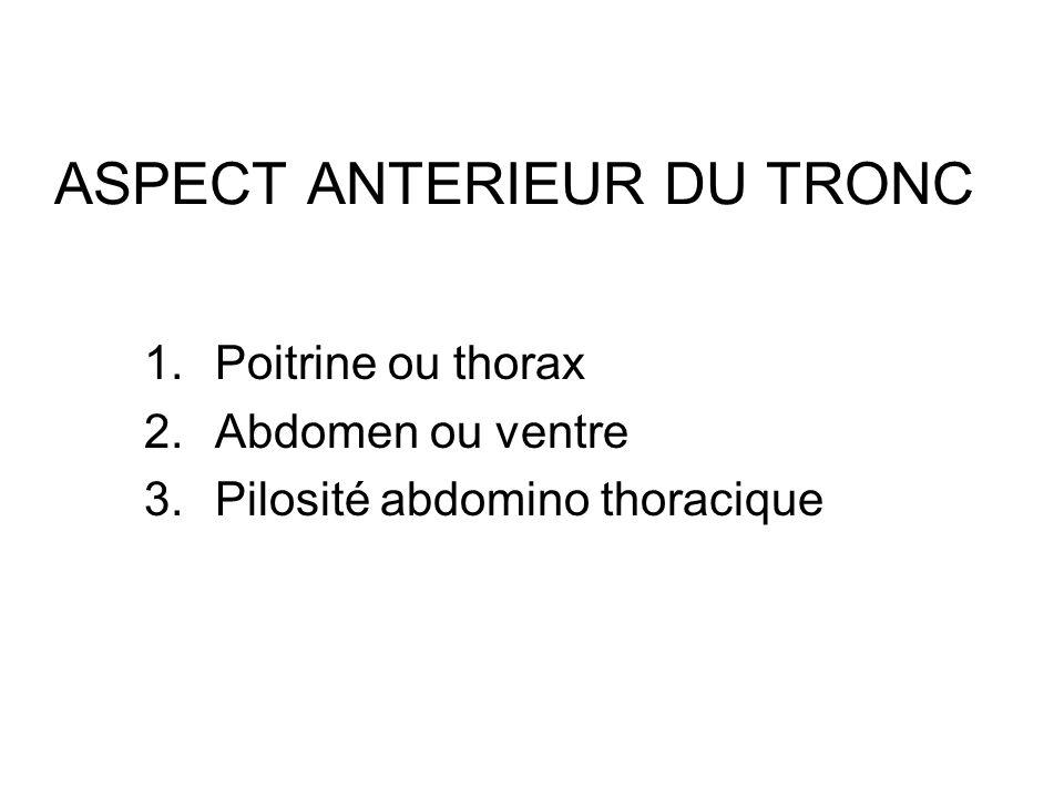 ASPECT ANTERIEUR DU TRONC