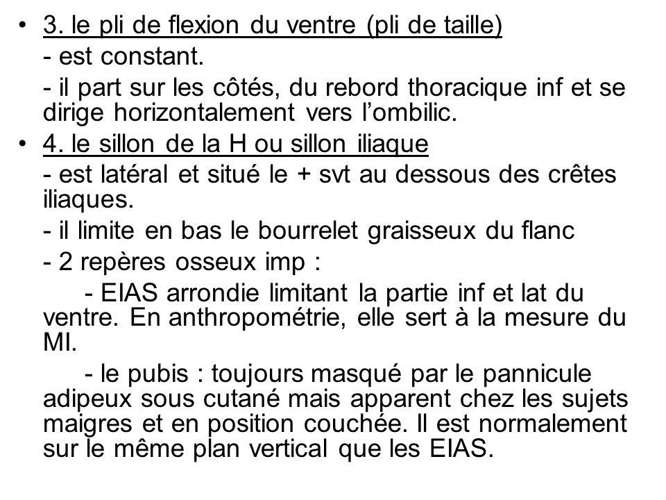 3. le pli de flexion du ventre (pli de taille)