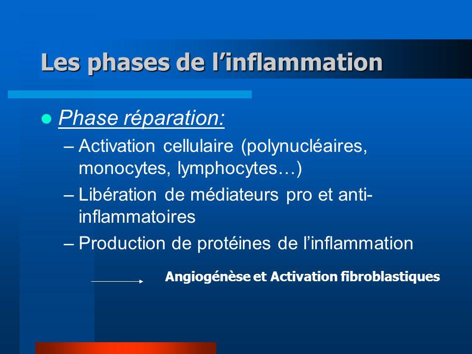 Les phases de l'inflammation
