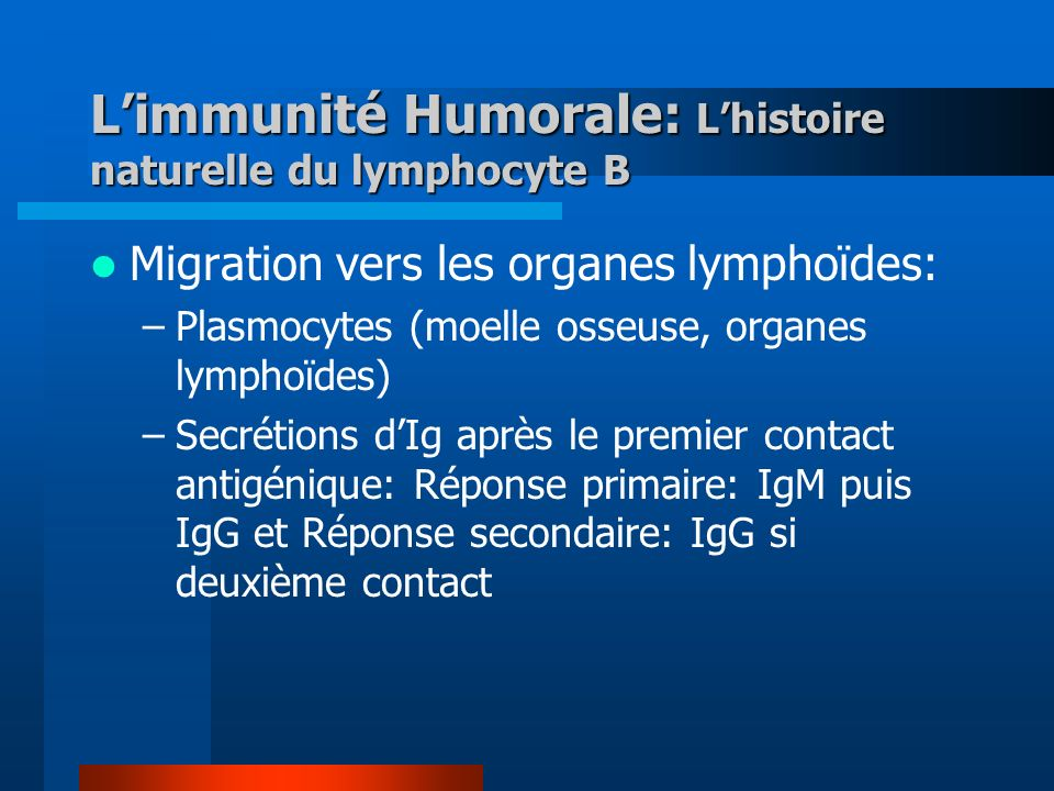 L'immunité Humorale: L'histoire naturelle du lymphocyte B