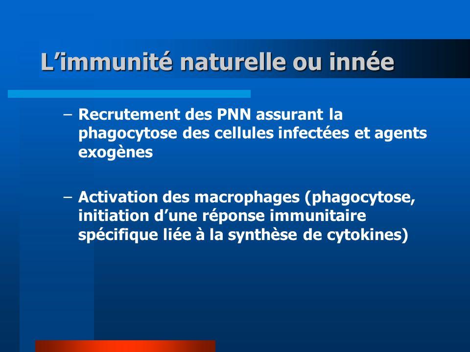 L'immunité naturelle ou innée