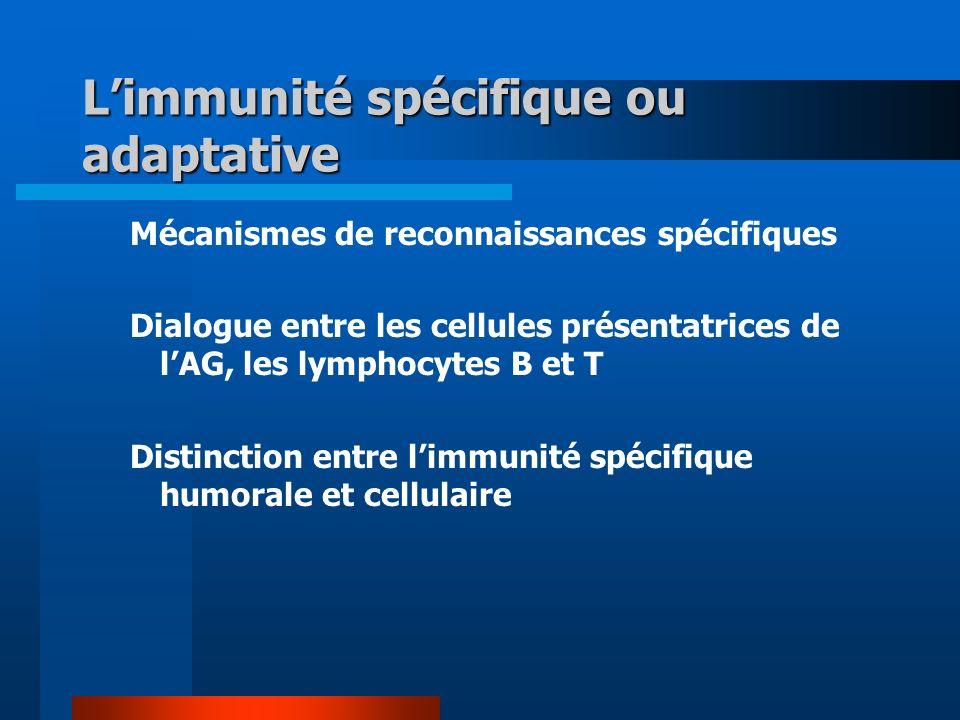 L'immunité spécifique ou adaptative