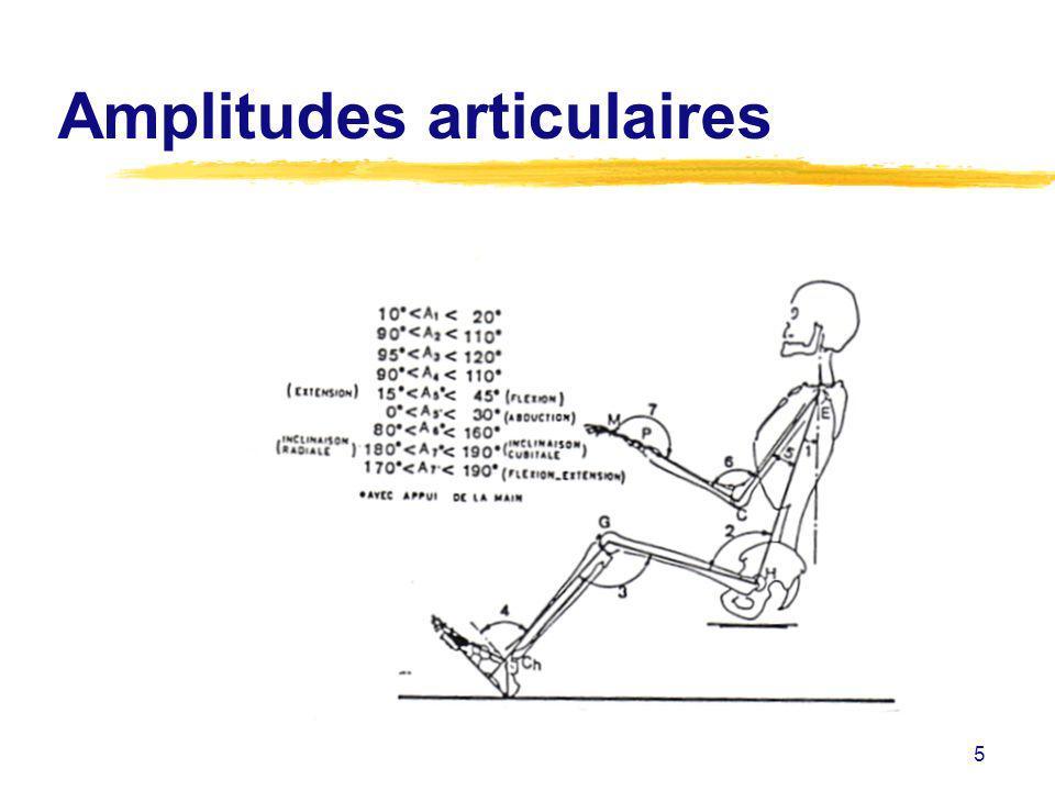 Amplitudes articulaires