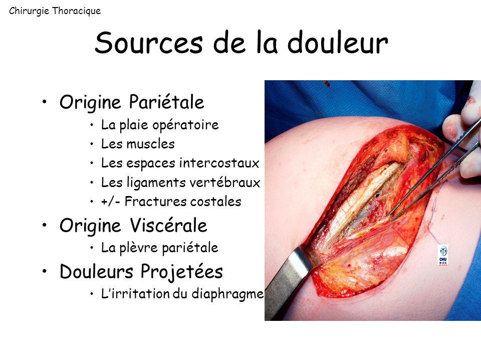 Sources de la douleur Origine Pariétale Origine Viscérale