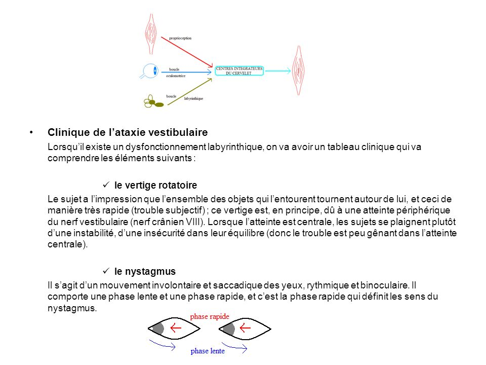 Clinique de l'ataxie vestibulaire