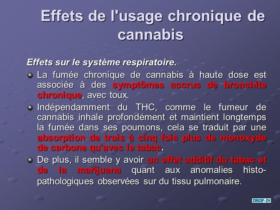 Effets de l usage chronique de cannabis