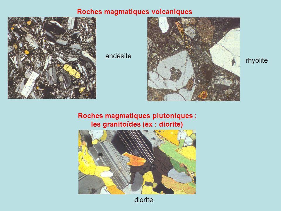Roches magmatiques plutoniques : les granitoïdes (ex : diorite)
