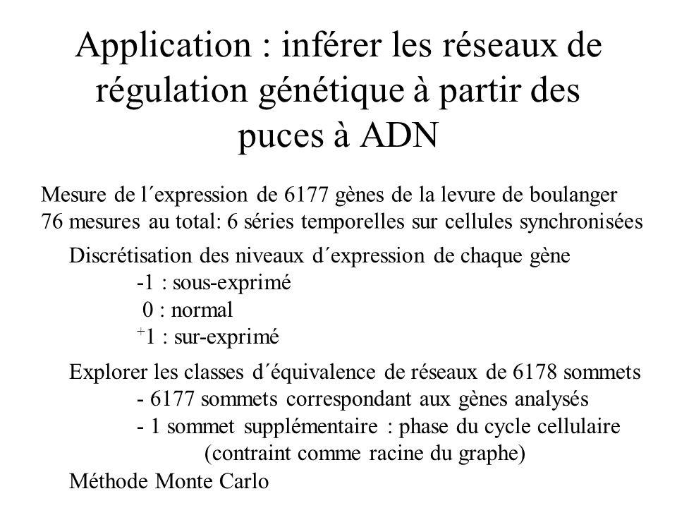 Application : inférer les réseaux de régulation génétique à partir des puces à ADN