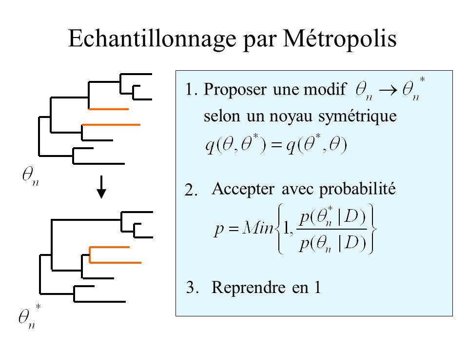 Echantillonnage par Métropolis