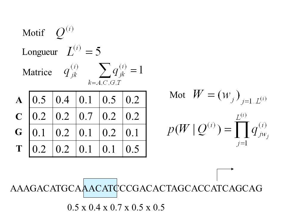 0.5 0.4 0.1 0.2 0.7 Motif Longueur Matrice Mot A C G T