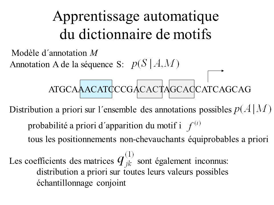 Apprentissage automatique du dictionnaire de motifs