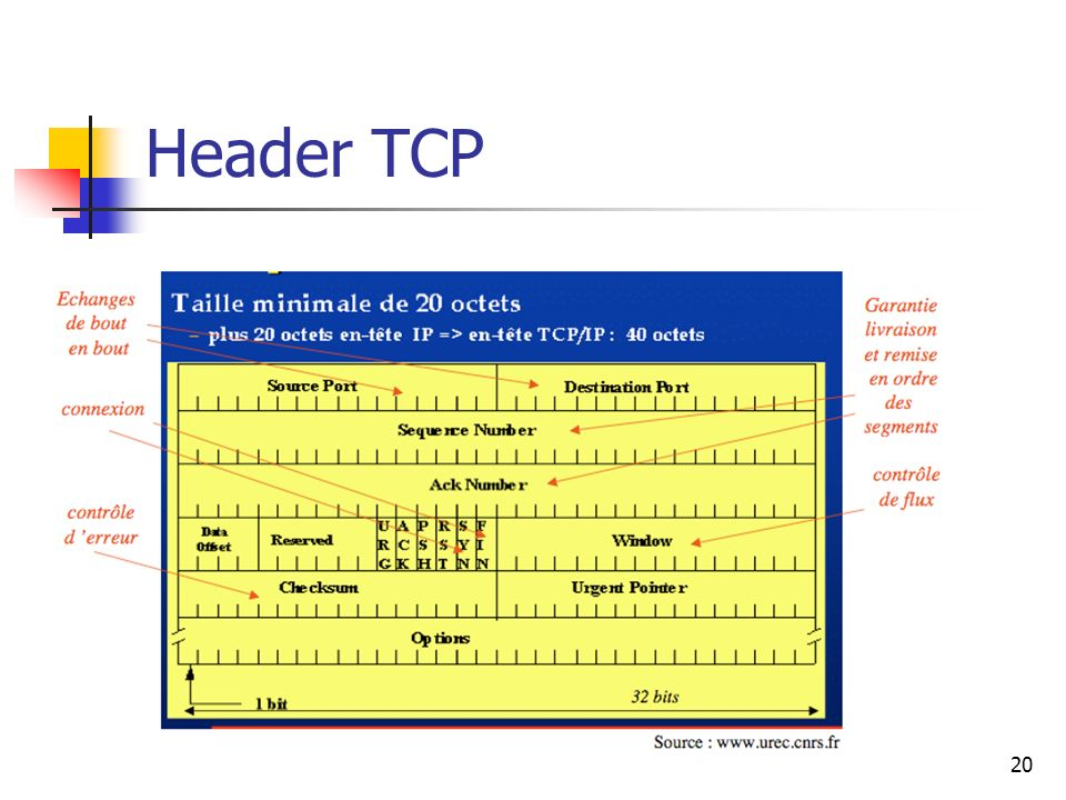 Header TCP