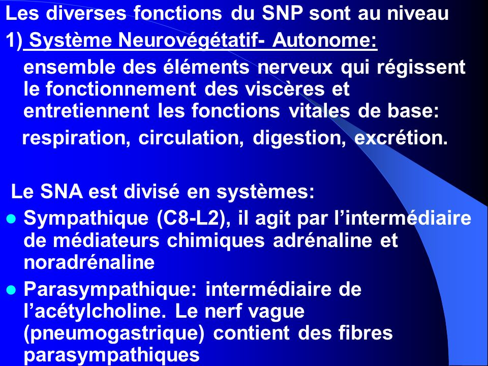 Les diverses fonctions du SNP sont au niveau