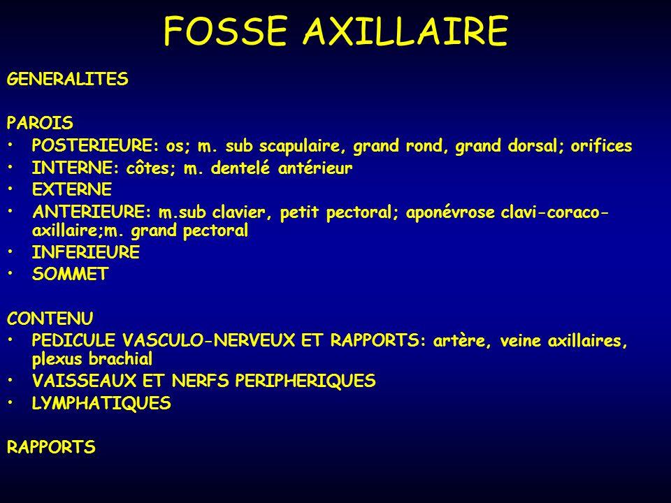 FOSSE AXILLAIRE GENERALITES PAROIS