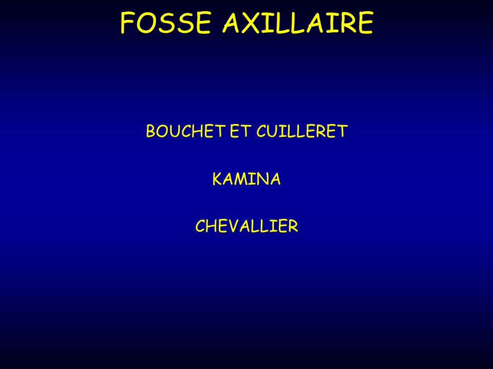 FOSSE AXILLAIRE BOUCHET ET CUILLERET KAMINA CHEVALLIER