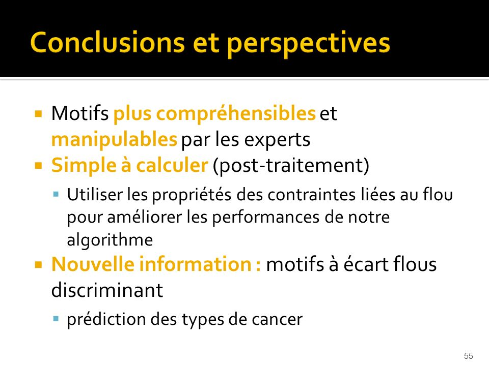 Conclusions et perspectives