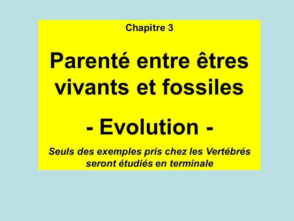 Parenté entre êtres vivants et fossiles - Evolution -