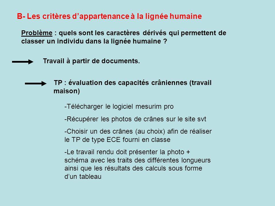 B- Les critères d'appartenance à la lignée humaine