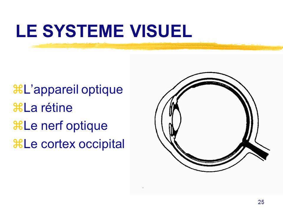 LE SYSTEME VISUEL L'appareil optique La rétine Le nerf optique
