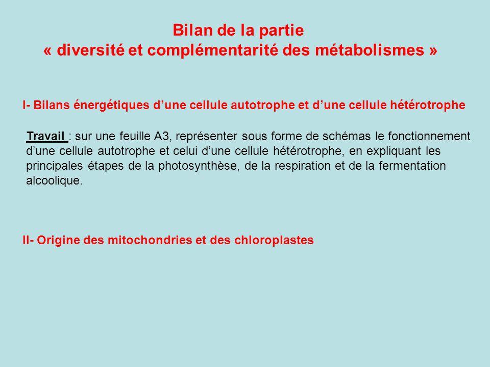 « diversité et complémentarité des métabolismes »