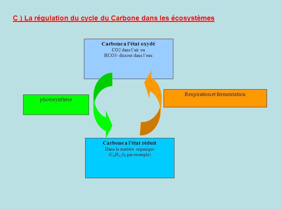 Carbone a l'état réduit
