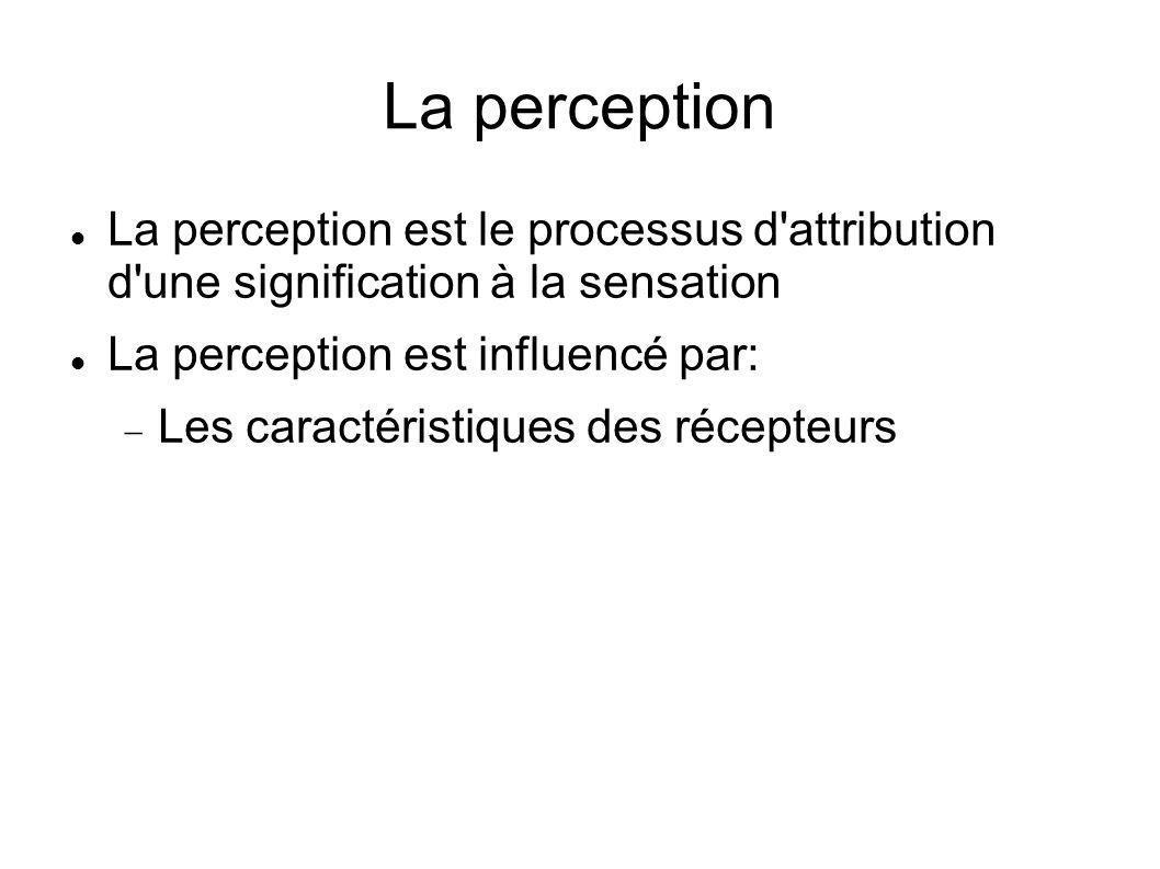 La perception La perception est le processus d attribution d une signification à la sensation. La perception est influencé par: