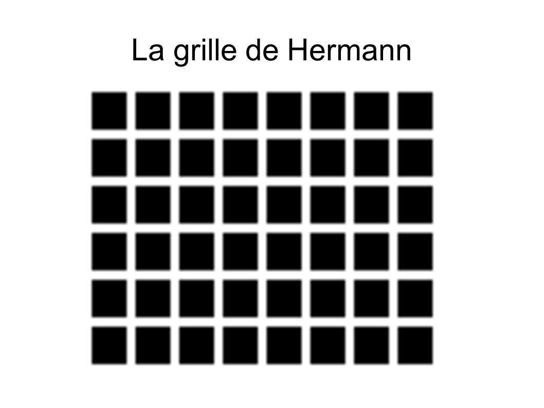 La grille de Hermann