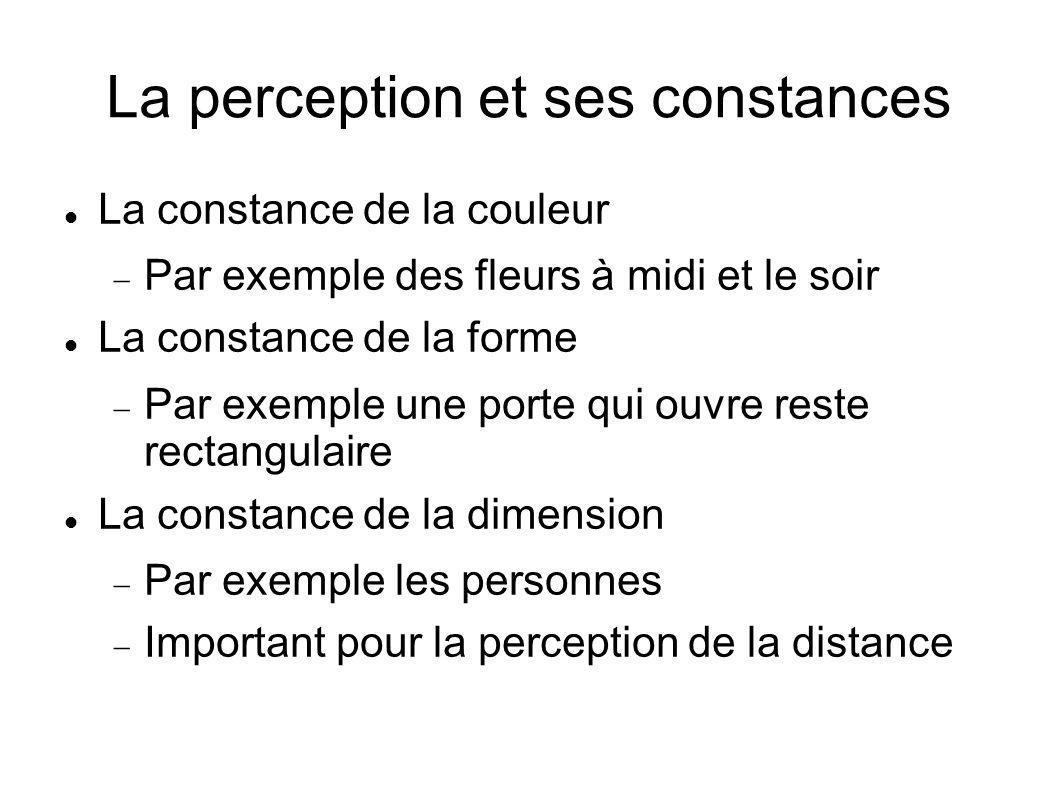 La perception et ses constances